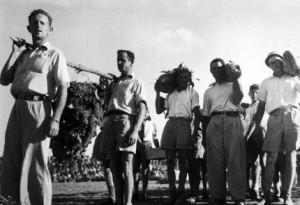Des représentants des Kibboutzim apportent les prémices pour la fête de Shavouot de 1951