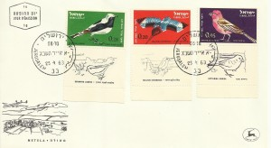 0262fdc